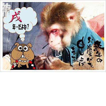 【江東教室 カッチャン様】猿回しのお猿ちゃんに主役を奪われて焦っている戌のイラストがユニークです!
