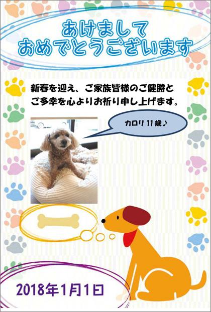 【八街教室 K.T様】我が家の自慢の愛犬の写真を挿入してみました♪