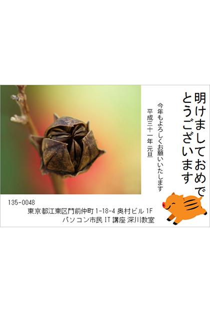 【深川教室 シタラ様】エプソンの素材と自分で撮った写真で作りました。蕾の写真が素敵です。