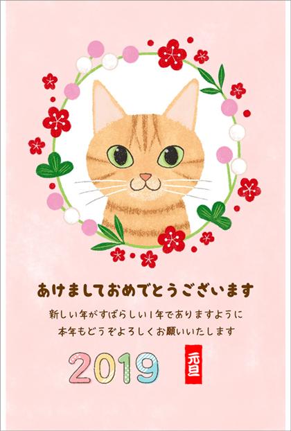 【稲毛海岸教室 カタノ様】猫好きにはたまらない、可愛らしい猫の年賀状が完成しました。