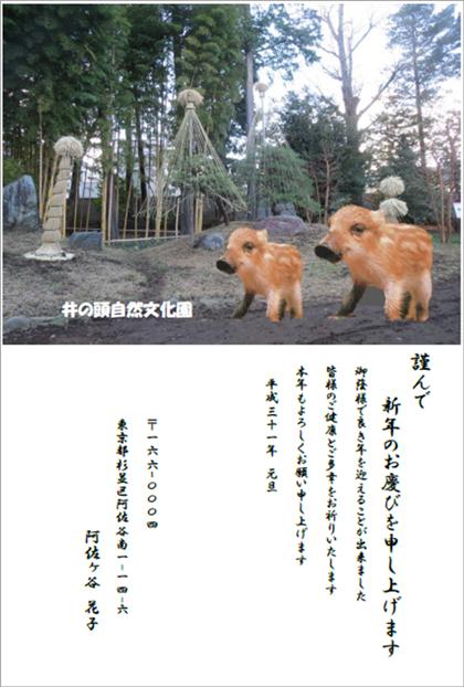 【阿佐ヶ谷教室 木村紀子様】お気に入りの井の頭自然文化園の写真に、イノシシの写真を合成しました!ご本人も大満足です!